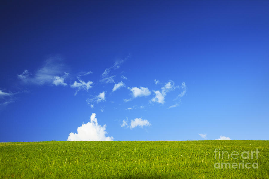Basic Photograph - Grass Cloud Sky by Brandon Tabiolo - Printscapes