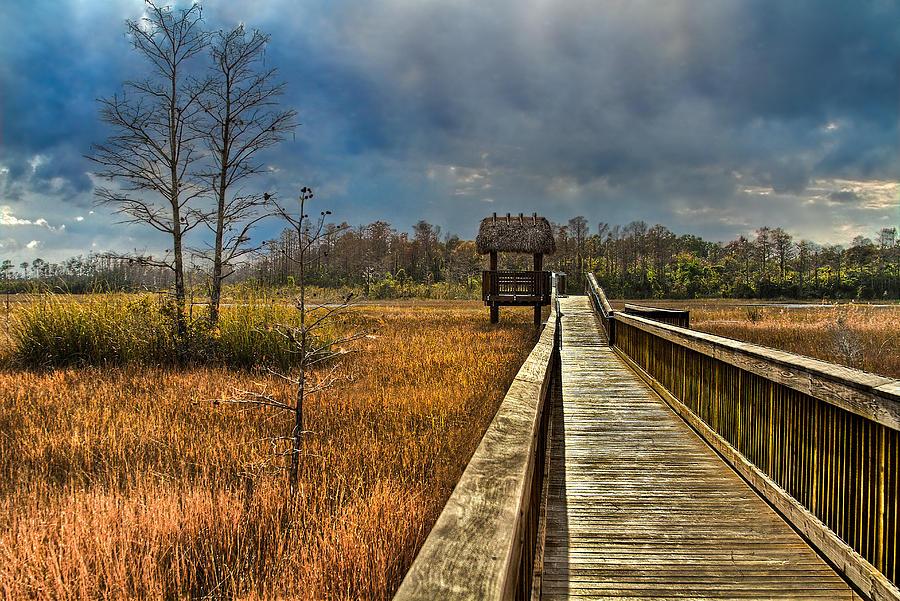 Clouds Photograph - Grassy Glades by Debra and Dave Vanderlaan