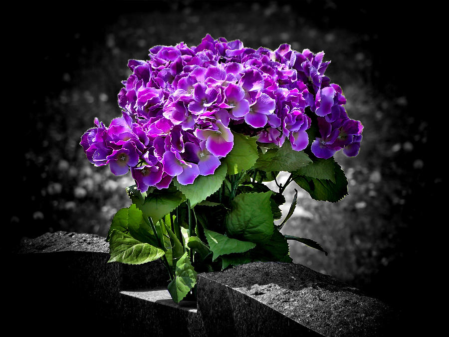 Grave Photograph - Gravely Beautiful by Karen M Scovill