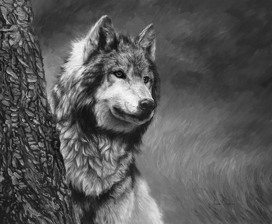 Gray Wolf - Black And ...