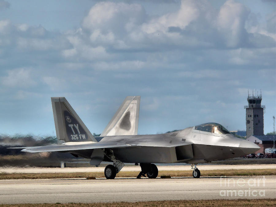 Grounded Raptor Photograph