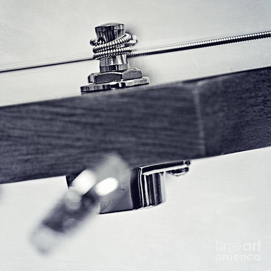 guitar V Photograph