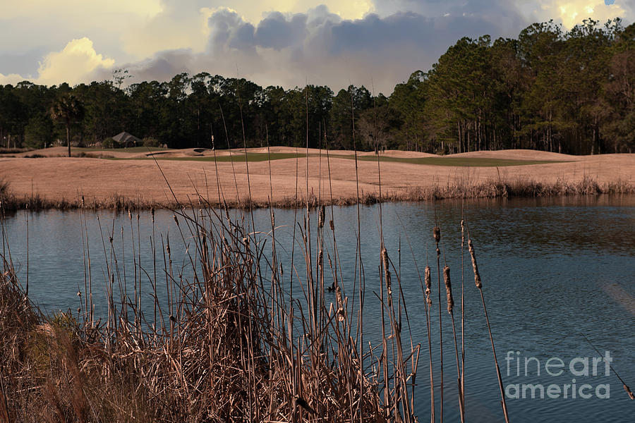 Rivertowne Country Club Winter Golfing Photograph