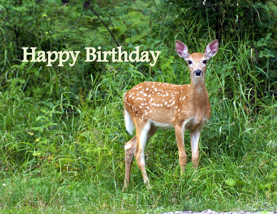 Happy Birthday Greeting Card - Happy Birthday 1 by Marty Koch