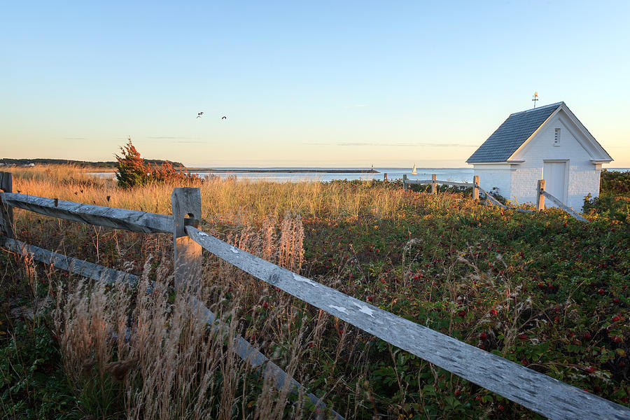 Cape Cod Photograph - Harbor Shed by Bill Wakeley