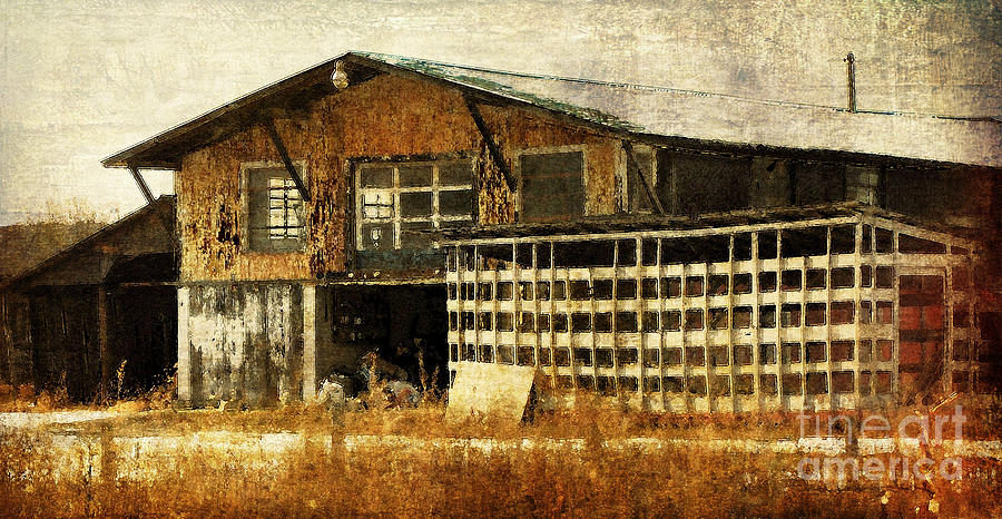 Farm Photograph - Hard Labor by Lois Bryan