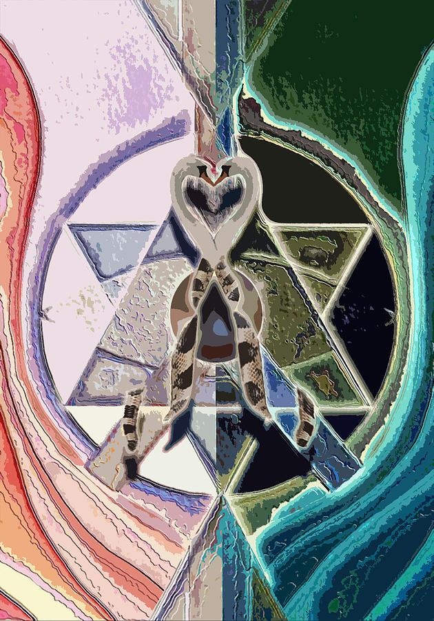 Harmony Mixed Media - Harmony Of Duality by Saarah Esther Felix
