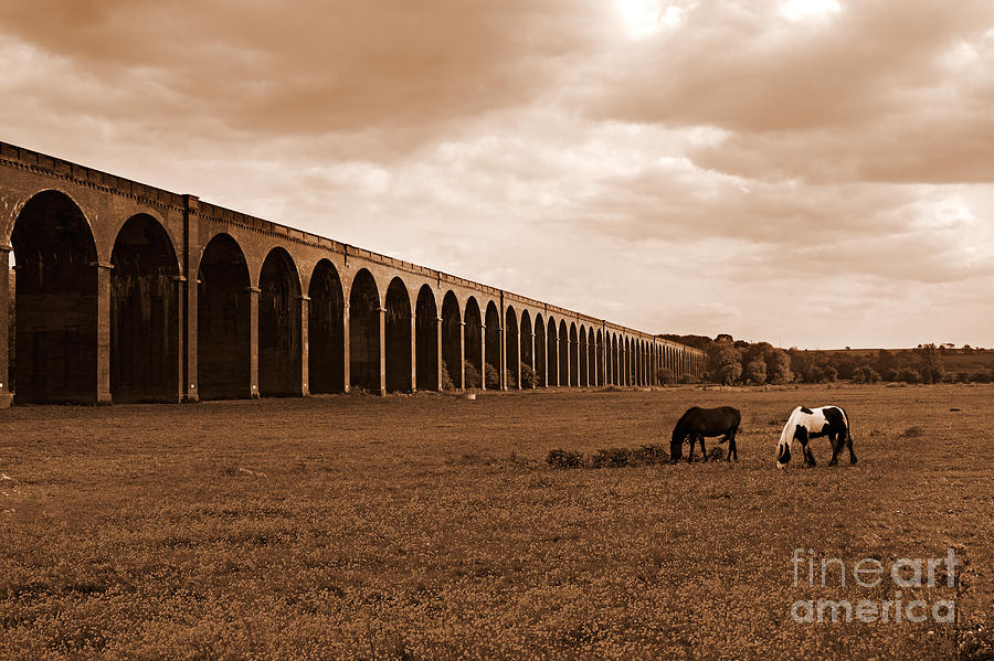 Harringworth Photograph - Harringworth Viaduct And Horses Grazing by Louise Heusinkveld