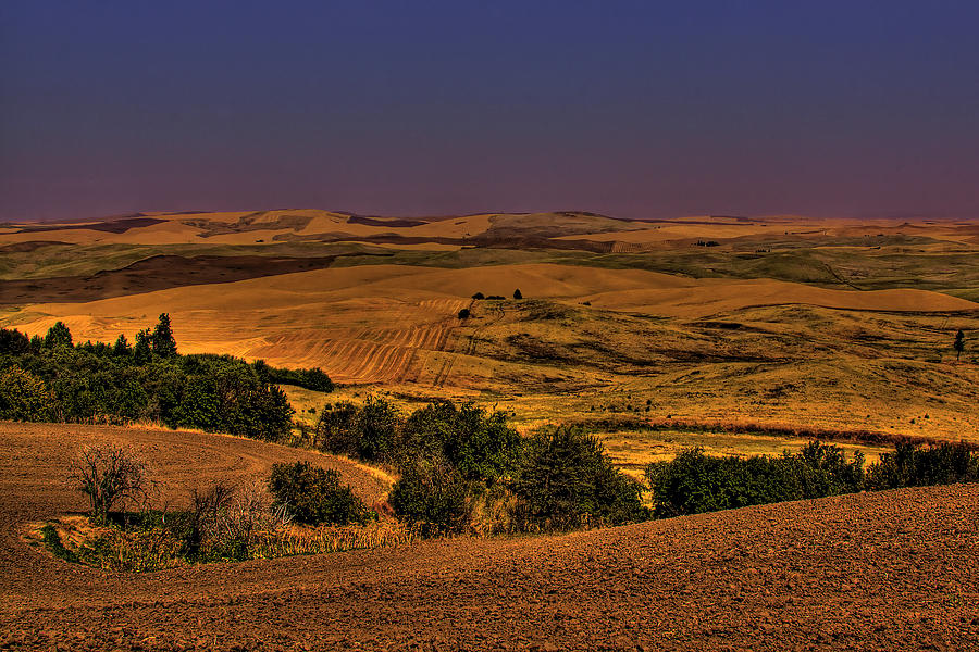 Harvest Photograph - Harvested Fields by David Patterson