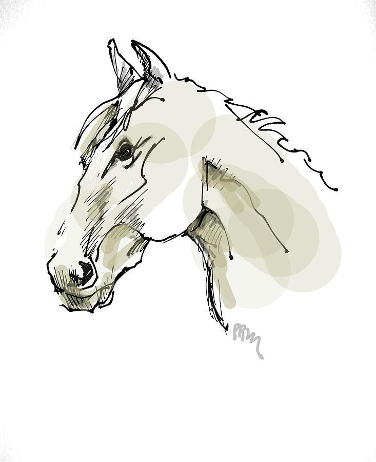 Head Sketch  Drawing