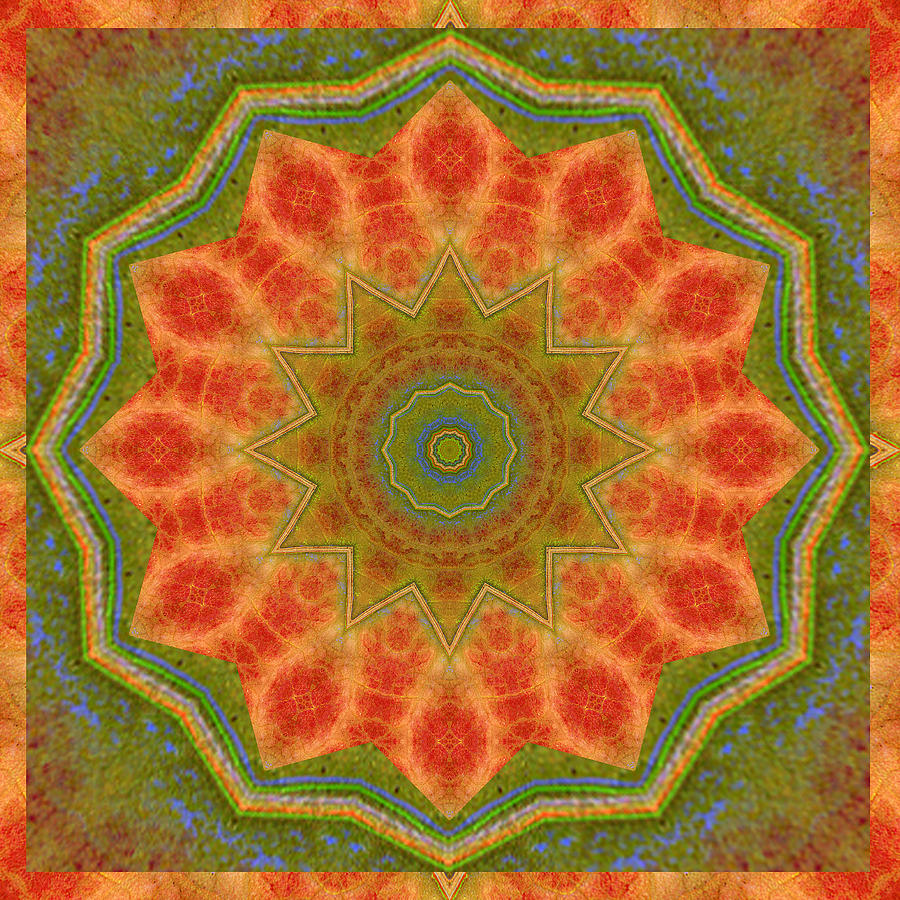 Photograph - Healing Mandala 14 by Bell And Todd