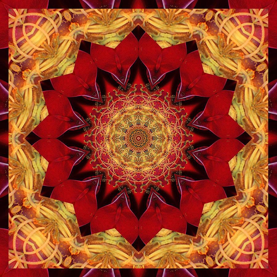 Mandalas Photograph - Healing Mandala 28 by Bell And Todd