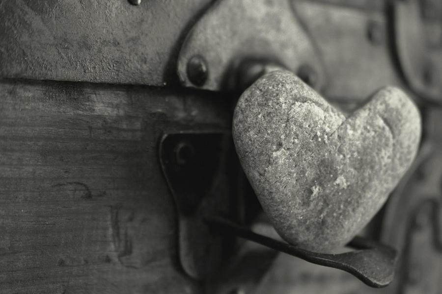 Heart Photograph - Heart Rock by Toni Hopper