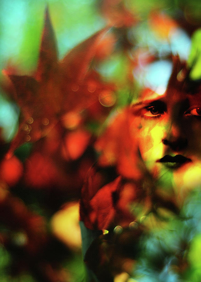 Autumn Photograph - Her Autumn Eyes by Rebecca Sherman