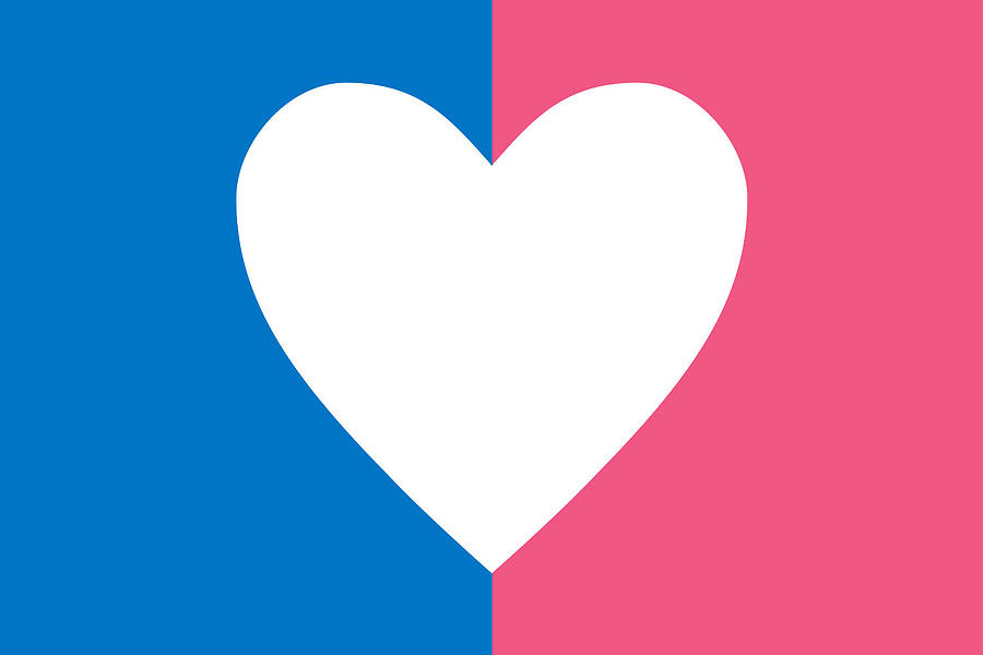 Heterosexual Flag is a piece of digital artwork by Newwwman which was ...