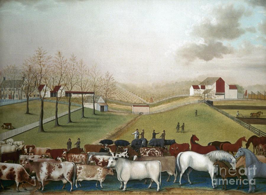 19th Century Photograph - Hicks: Cornell Farm, 1848 by Granger