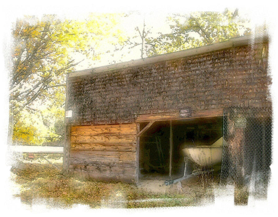 Shed Photograph - Hide And Seek by Rose Guay