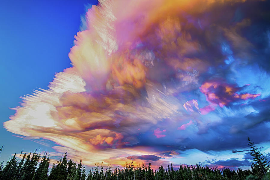 High Elevation Forest Sunset Sky Timed Stack Photograph