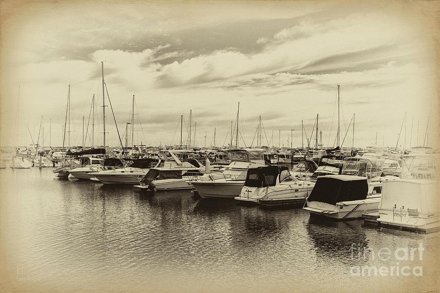 Boat Harbour Australia  city pictures gallery : ... Photograph Hillarys Boat Harbour, Western Australia by Elaine Teague