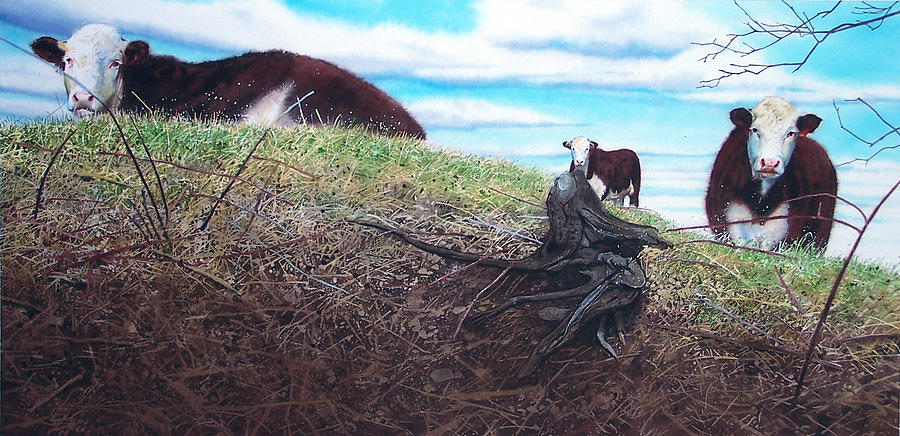 Steers Painting - Hillside Retreat by Denny Bond
