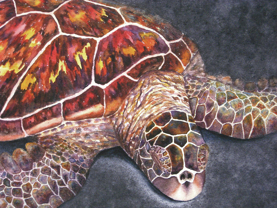 Honu Il Painting