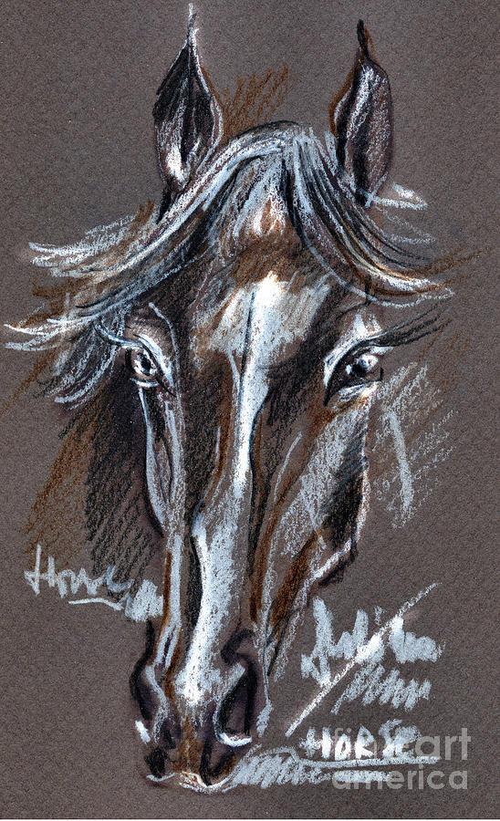 Crayons Drawing Drawing - Horse Study by Daliana Pacuraru