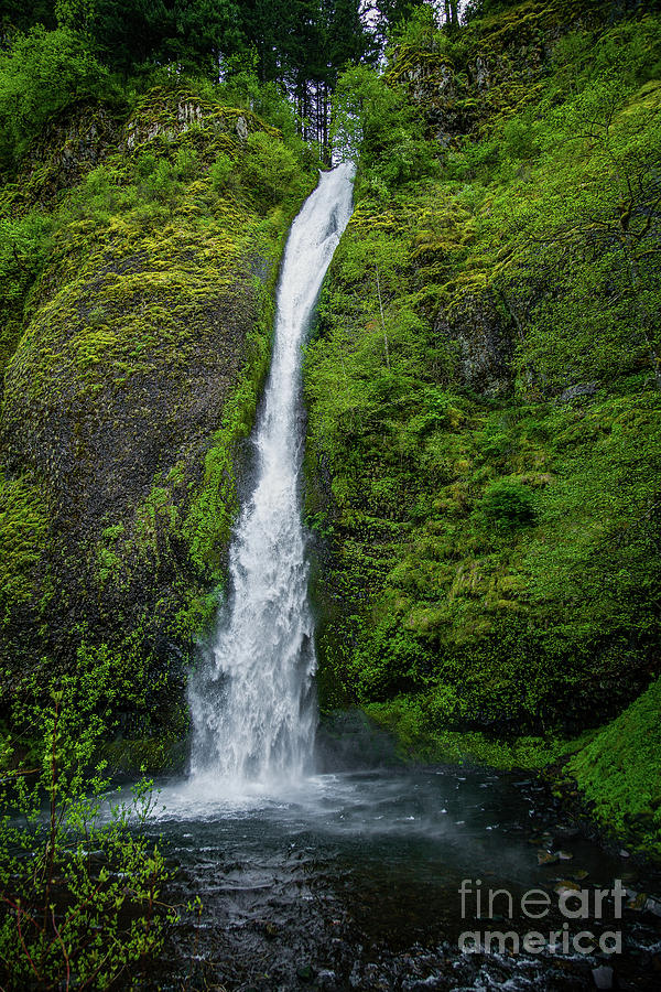 Horsetail Falls Photograph
