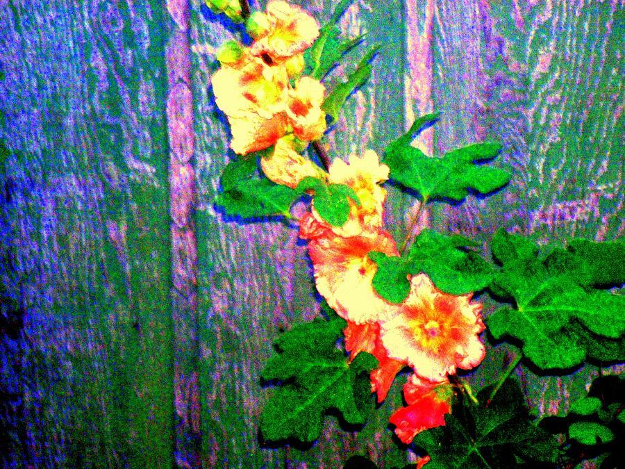 Hollyhock Flower Digital Art - Hot Summer Afternoon by  Connie Valasco