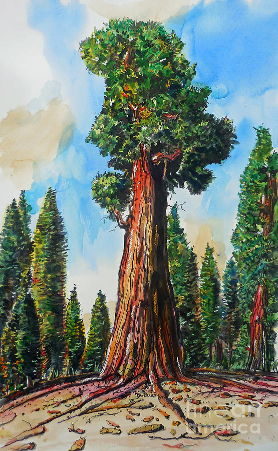 Huge Redwood Tree Painting by Terry Banderas Redwood Tree Painting