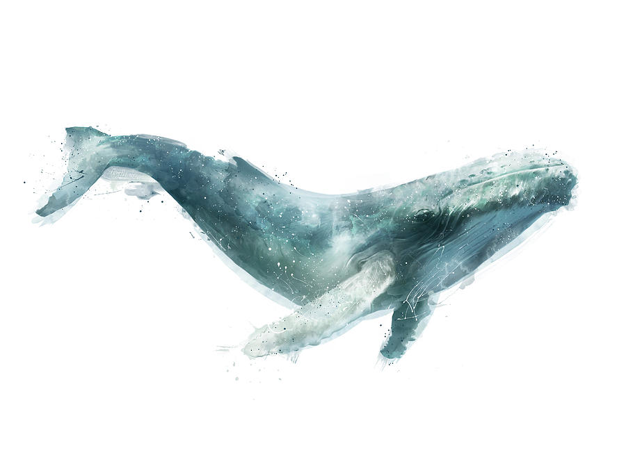Humpback Whale From Whales Chart is a painting by Amy Hamilton which ...