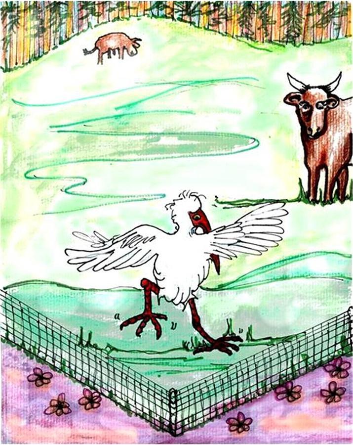 Ibis Hopping Drawing