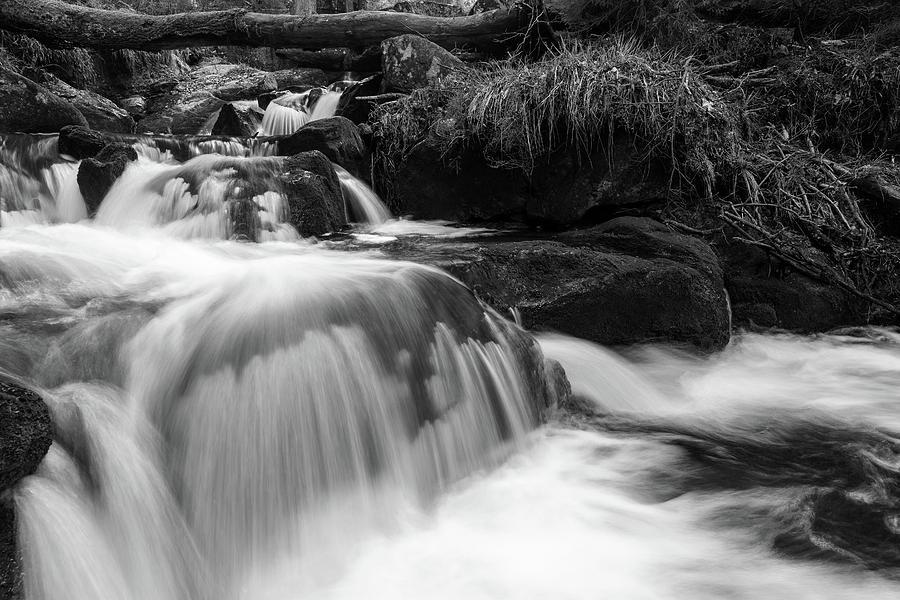 Ilse, Harz Monochrome Photograph