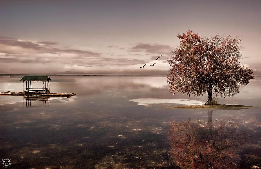 Dream Photograph - In Dreams by Lourry Legarde