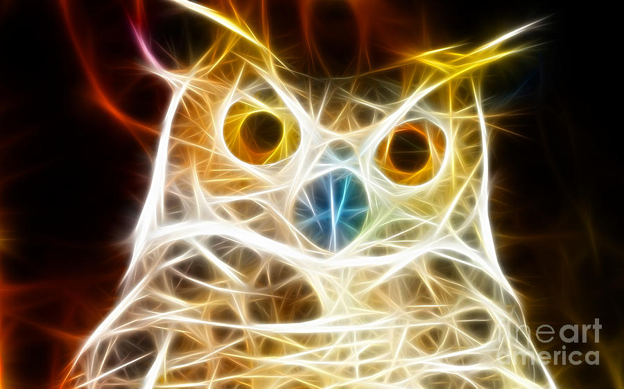 Owl Mixed Media - Incredible Owl Portrait by Pamela Johnson