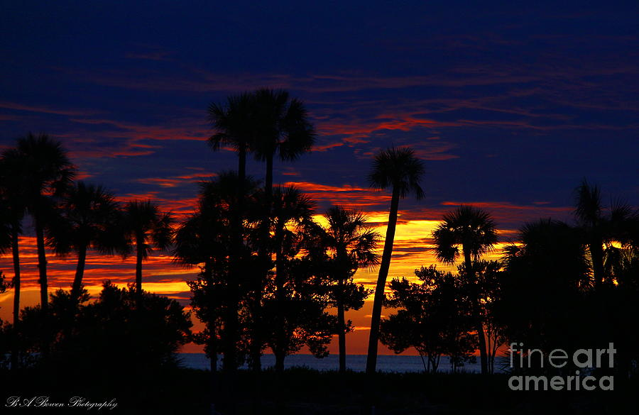 Sunset Photograph - Indigo Sunset by Barbara Bowen