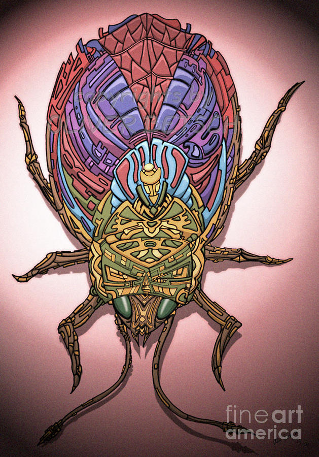 Insect Drawing - Insect by Oliver Betsch