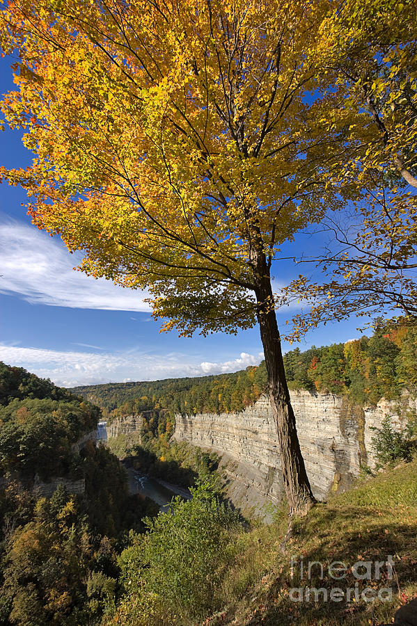 Nature Photograph - Inspiration Point by Louise Heusinkveld