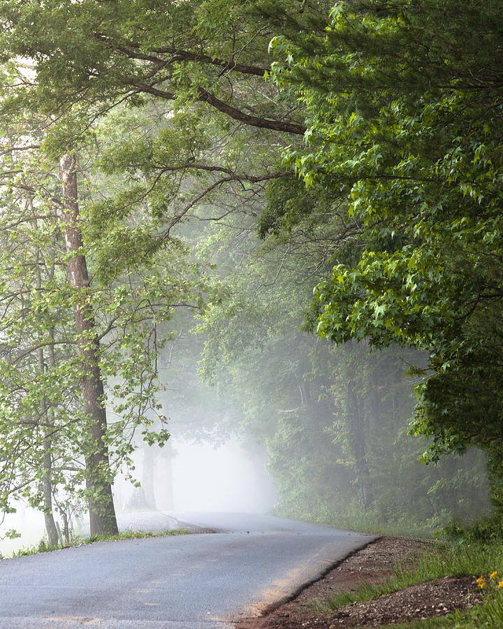 Cades Cove Photograph - Into The Fog by Andrew Soundarajan