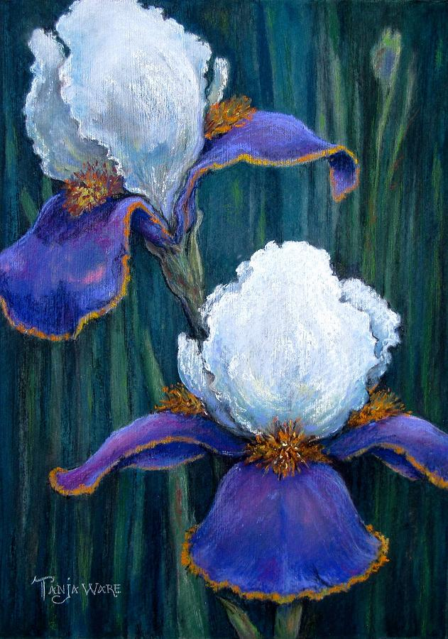 Floral Painting - Irises by Tanja Ware