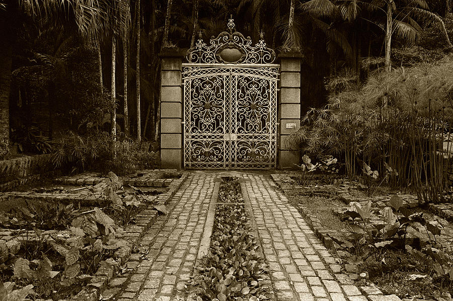 Gate Photograph - Iron Gate by Amarildo Correa