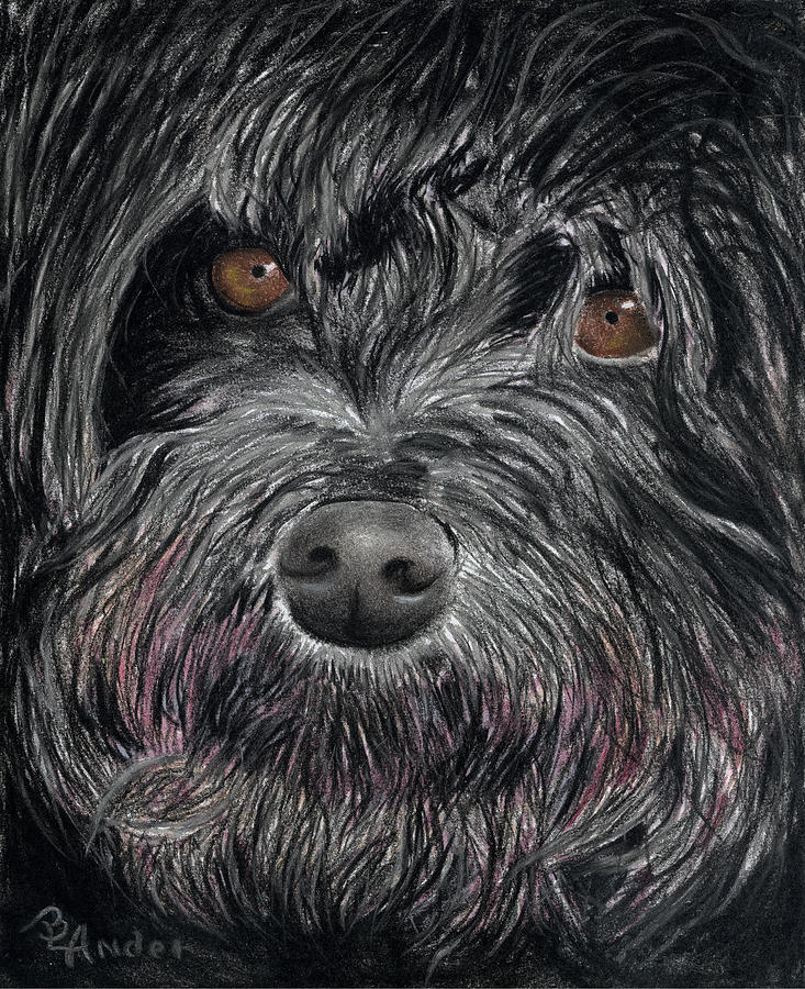 Dog Drawing - Is That A Smile by Brent Ander