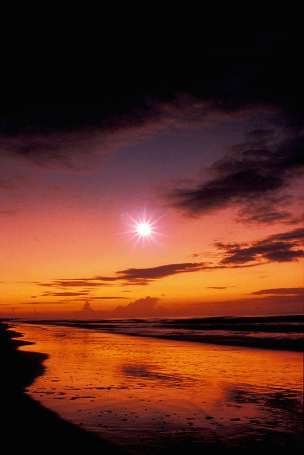 Star Photograph - Isle Of Palms by Gerard Fritz