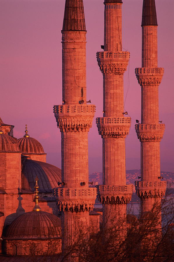 Vertical Photograph - Istanbul, Turkey, Blue Mosque by Grant Faint