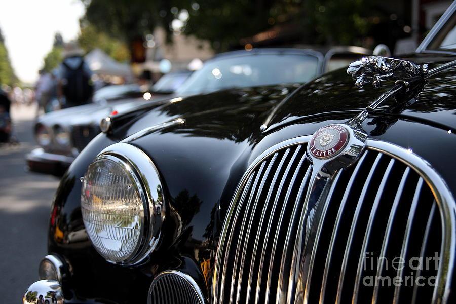 Car Photograph - Jaguar by Wingsdomain Art and Photography