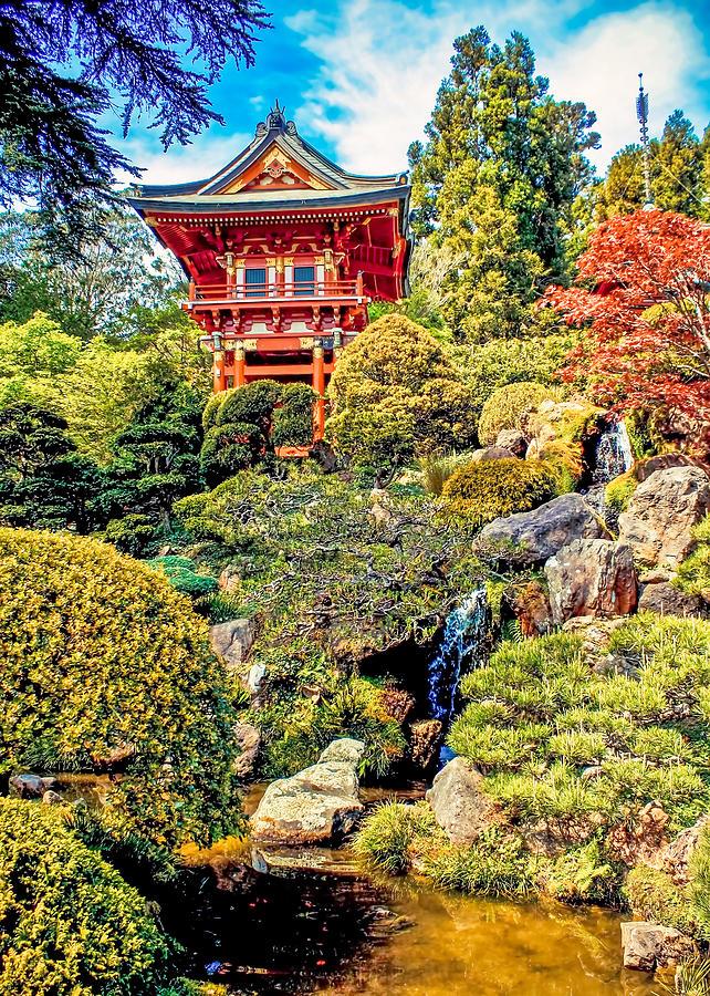 Japanese Tea Garden Golden Gate Park San Francisco Photograph By Kinga Szymczyk