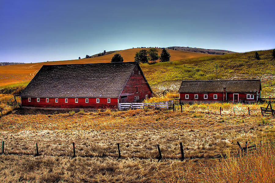 Landscape Photograph - Johnson Road Barns by David Patterson