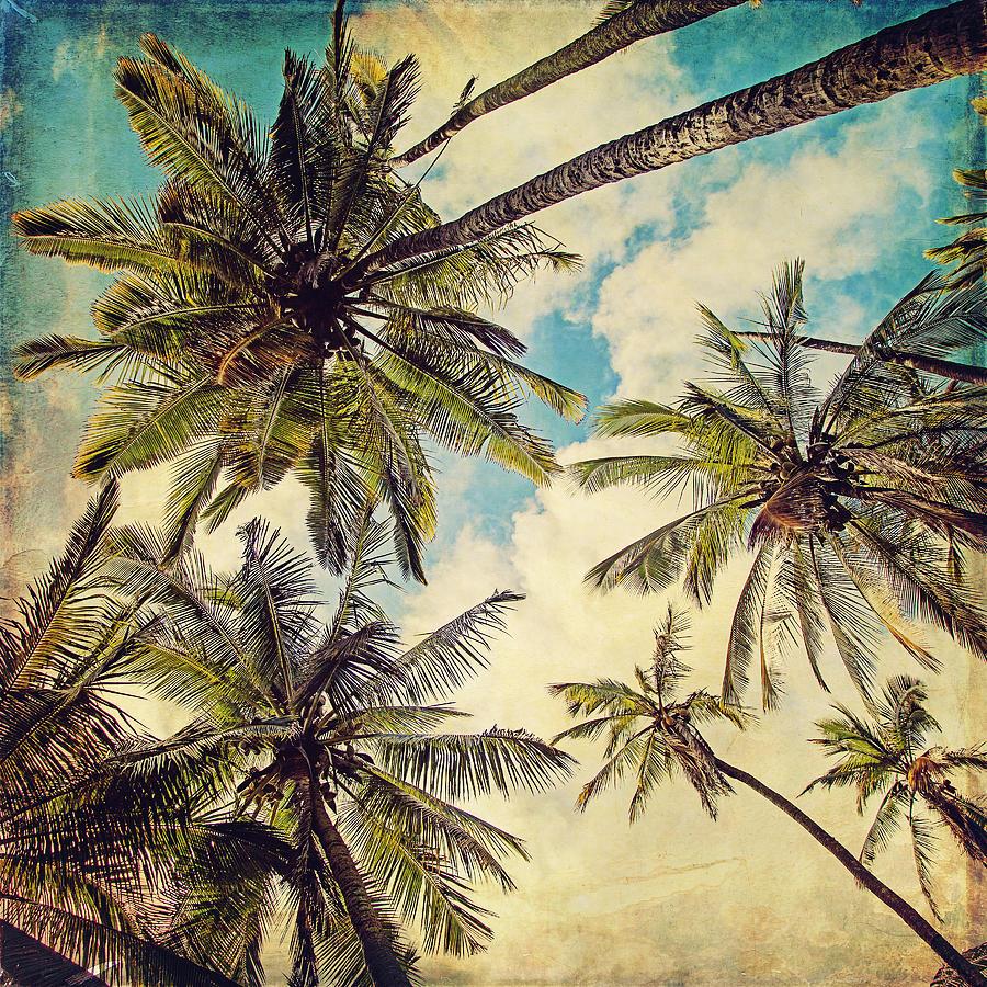 Island Palms Community Hawaii