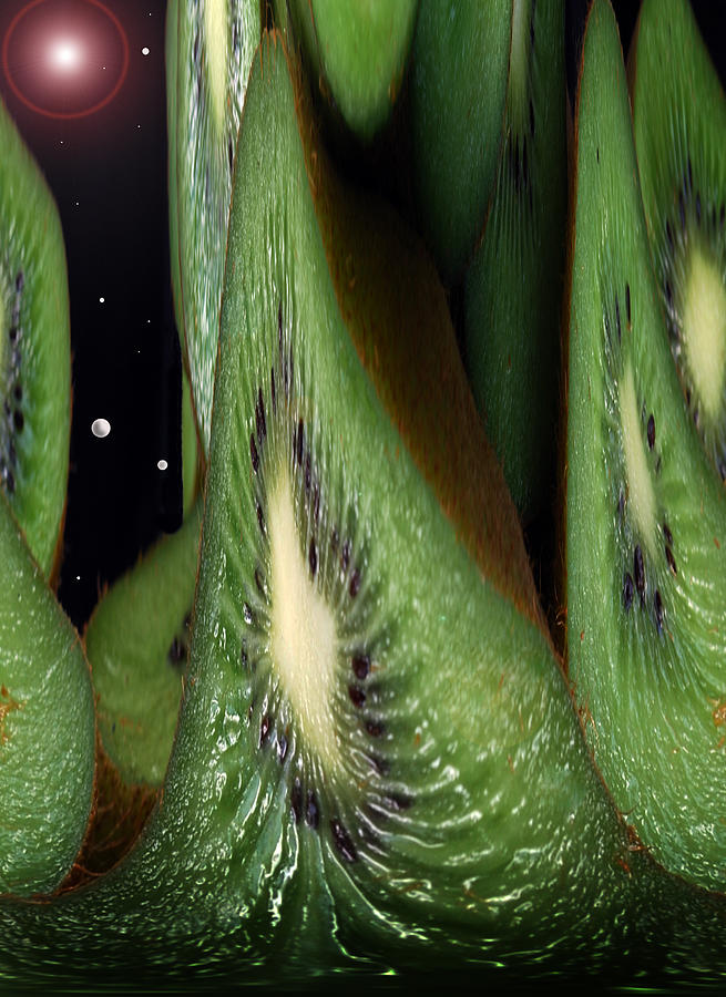 Kiwi Fruit  Photograph - Kiwi Space by Terence Davis