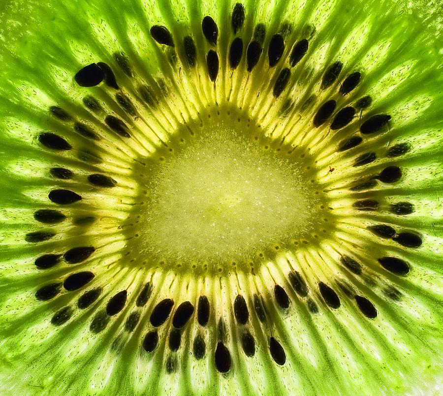 Kiwi Photograph - Kiwi Up Close by June Marie Sobrito