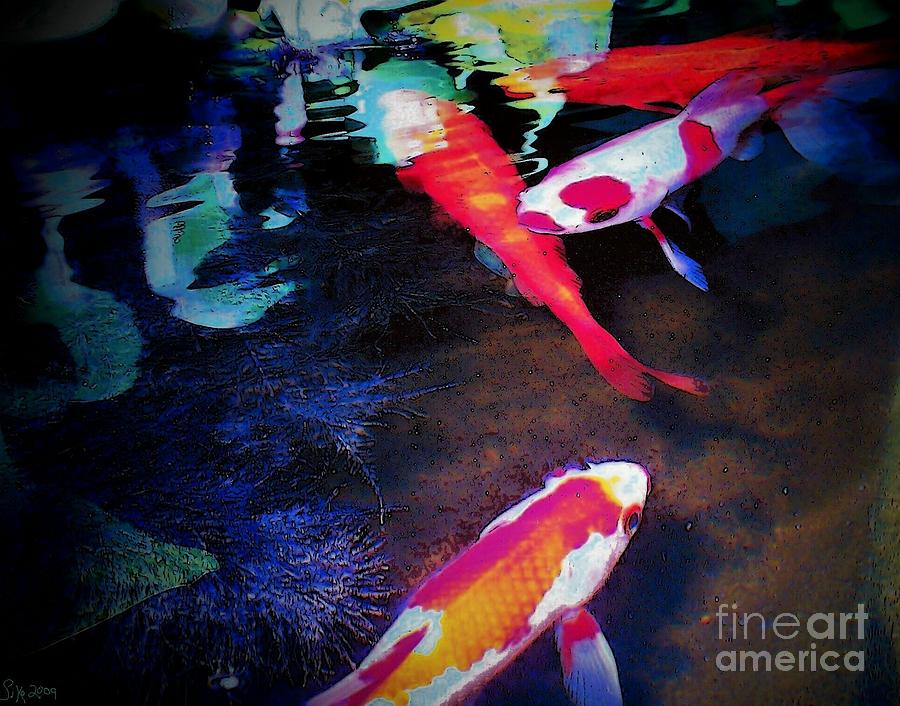 Koi Under Glass Photograph - Koi Under Glass by Sally Siko